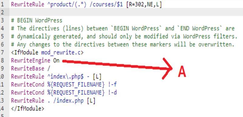 Файл находится в веб-папке public_html или www