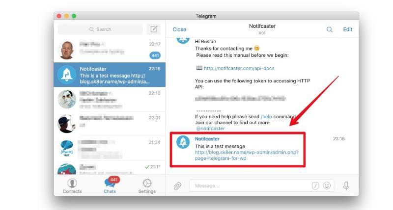 скриншот телеграма